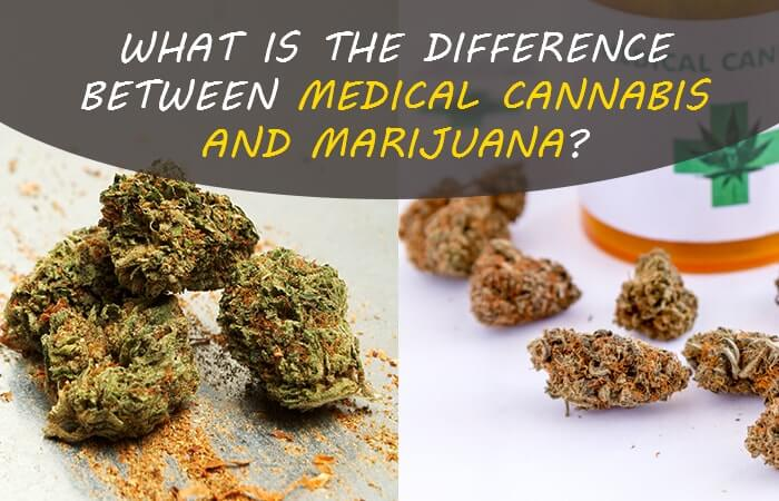 What is the Difference Between Medical Cannabis and Marijuana?
