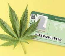Weed Card: What is It and What Does It Help You Get?